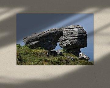 The Burren in Ierland van Susan Dekker