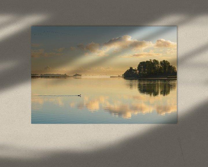 Sfeerimpressie: Nederlandse Reflecties van Pieter Struiksma