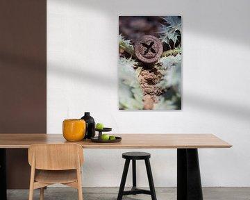 Eucalyptus knop (Portugal) van Tot Kijk Fotografie: natuur aan de muur