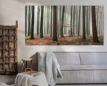 Mistig bos van Evert Jan Kip
