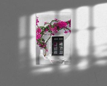 Bloemen aan een muur in Bougainvillea in Mykonos van Atelier Liesjes