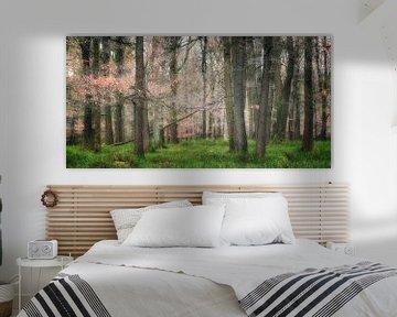 The Magical Forest ll van Rigo Meens