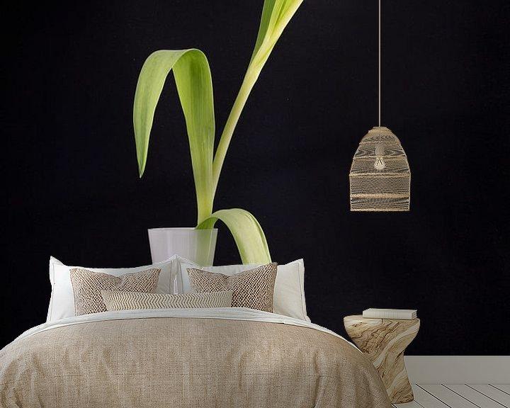 Sfeerimpressie behang: Tulp in een witte vaas met zwarte kiezelstenen van Pascal Raymond Dorland