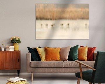 Abstract landschap met ganzen van Hans Debruyne
