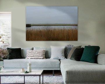Broekpolder uitzicht op Maasland van FotoGraaG Hanneke