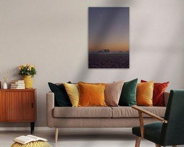 Maan bij zonsondergang van Piet Ritzema