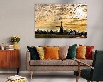 A Dutch windmill in evening light