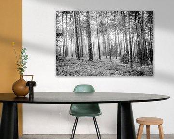 Door het bos von Karsten van Herwaarden