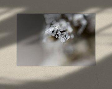 Tak met ijskristallen van Marcel Pietersen
