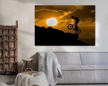 Mountainbiker silhouette von Tejo Coen