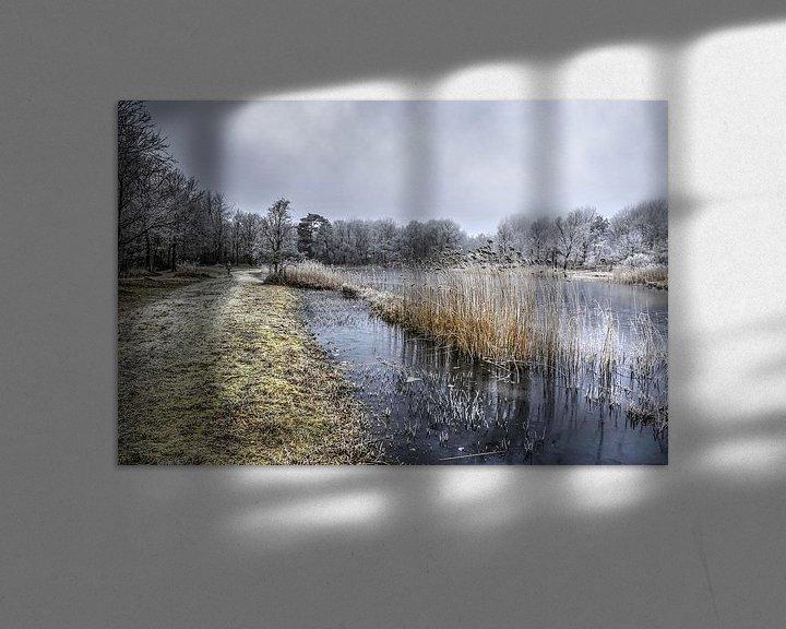 Sfeerimpressie: Winter bij de Tenellaplas van Frans Blok