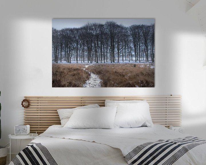 Sfeerimpressie: Sneeuw in de bossen op de Veluwe van Cilia Brandts