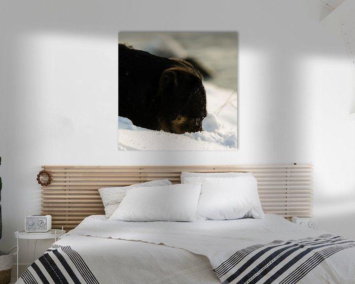 Sfeerimpressie: Hond zoekend in de sneeuw van Erik van Riessen