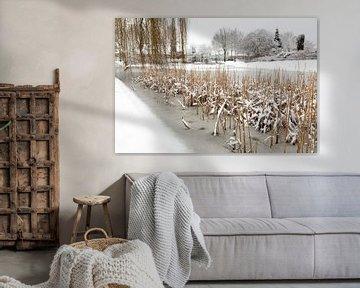 Sneeuw en ijs op water van vijver. van Ben Schonewille