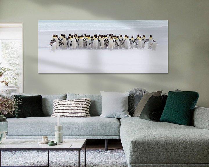 Sfeerimpressie: Just a few penguins van Claudia van Zanten