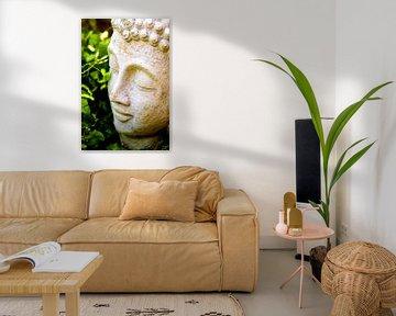 Boeddha van Vincent Vagevuur