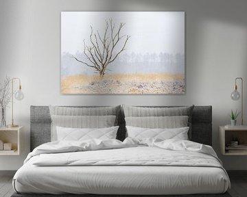 Dode boom in winterlandschap von Gonnie van de Schans