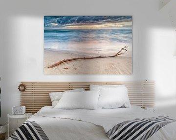 Aangespoelde tak op het strand van Hove-strand, Denemarken van Evert Jan Luchies
