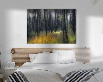 boslandschap van Henk Speksnijder