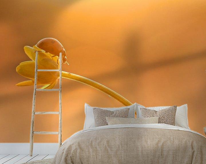 Sfeerimpressie behang: When the night falls  van Lieuwkje Vlasma