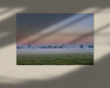 Mist van Sander Eggen