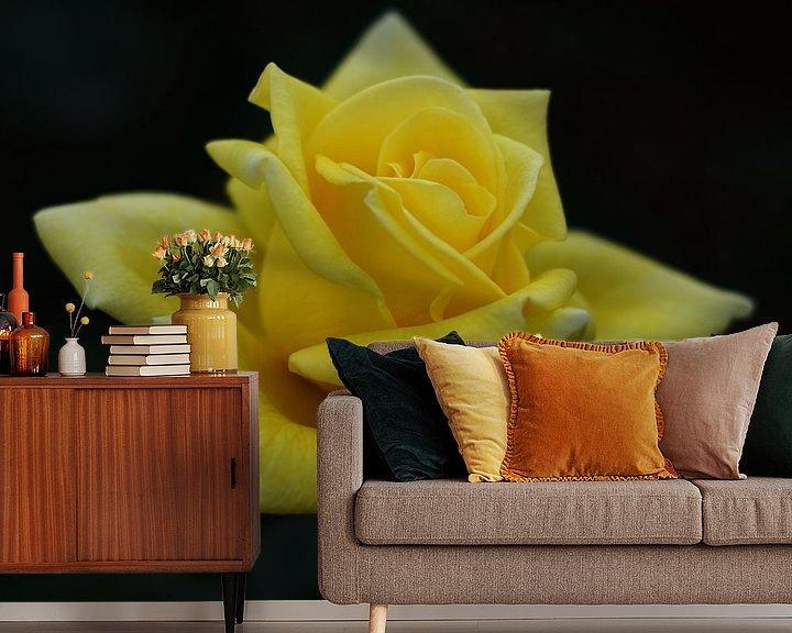 Impression: Gele roos sur Mike Bing
