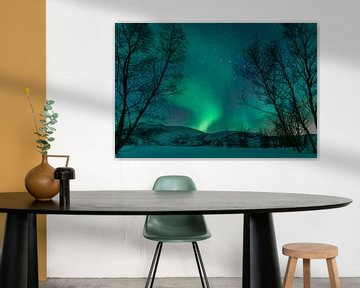 Nordlichter über den Lofoten Inseln in Norwegen von Sjoerd van der Wal