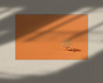De Wadi Rum woestijn in Jordanië. van Claudio Duarte