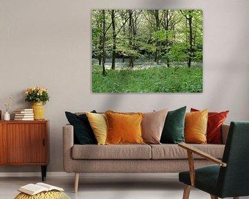 Witte lente von Lotte Veldt