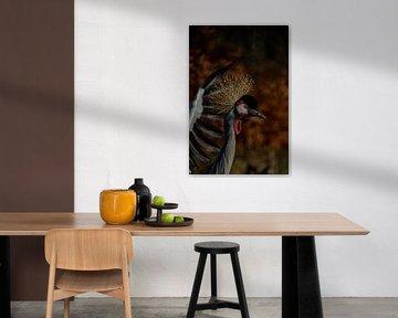 Kroonkraanvogel von Yvonne van der Meij