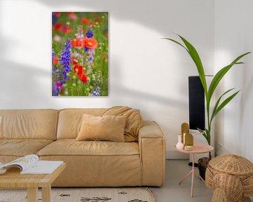 Veldbloemen rood en blauw von Yvonne van der Meij