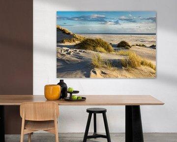 Landscape with dunes on the island Amrum van Rico Ködder