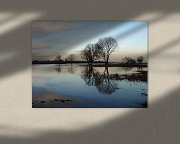 Reflexion von Petra Kilwinger