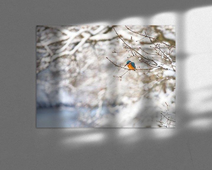 Beispiel: Eisvogel in der Winterlandschaft von Dirk-Jan Steehouwer