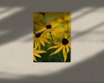Herfstbloemen van Marian Steenbergen