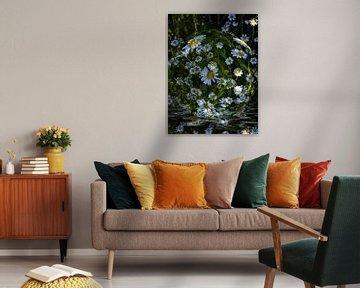 Floral globe - madeliefjes in water van Christine Nöhmeier