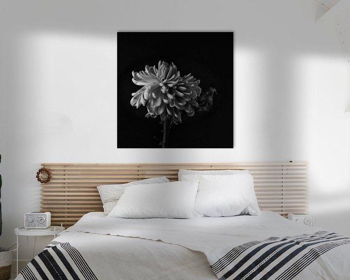 Sfeerimpressie: Faded Chrysant #8359 van Daan Overkleeft