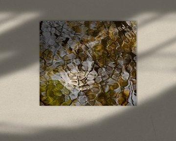 Wind door het water van Marian Steenbergen