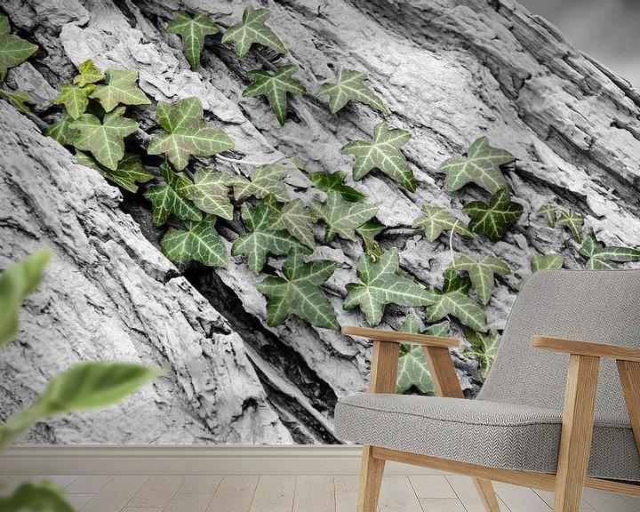 Sfeerimpressie behang: Groene klimop aan de bast van een boom. van Mariëtte Plat