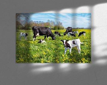 Weiland vol paardenbloemen met bonte koeien en kalfjes van Ben Schonewille
