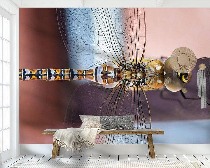Sfeerimpressie behang: Libelle van Nanouk el Gamal - Wijchers (Photonook)