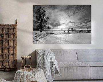Dutch winter landscape in black & white van Peter van Eekelen
