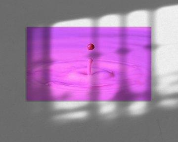 pink drop van Boy j p