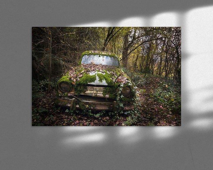 Beispiel: Verlassenes Auto im Wald. von Roman Robroek