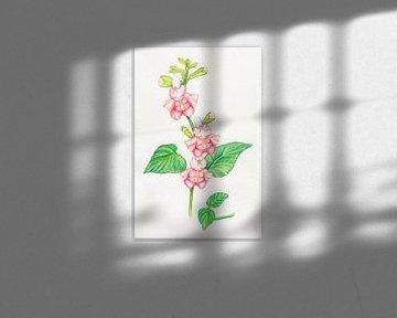 Blumen-Damen und Knospe Babys von Anouk Maria van Deursen