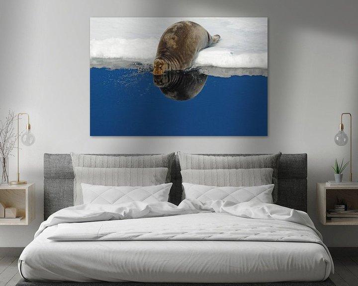 Sfeerimpressie: Baardrob en spiegelbeeld van Peter Zwitser