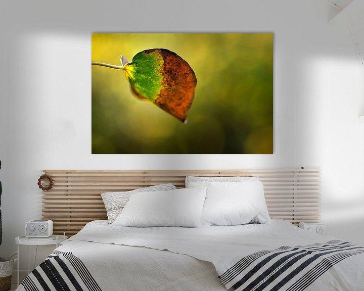 Impression: herfstblad sur Huibert van der Meer