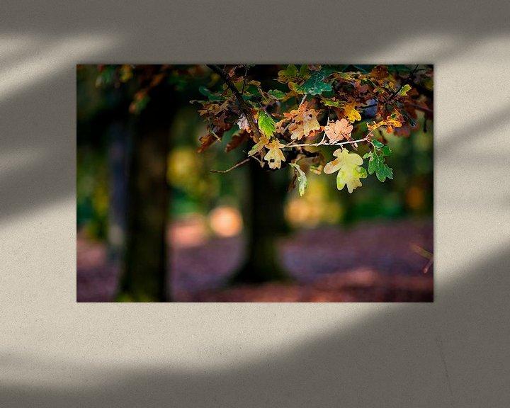 Sfeerimpressie: herfst van Huibert van der Meer