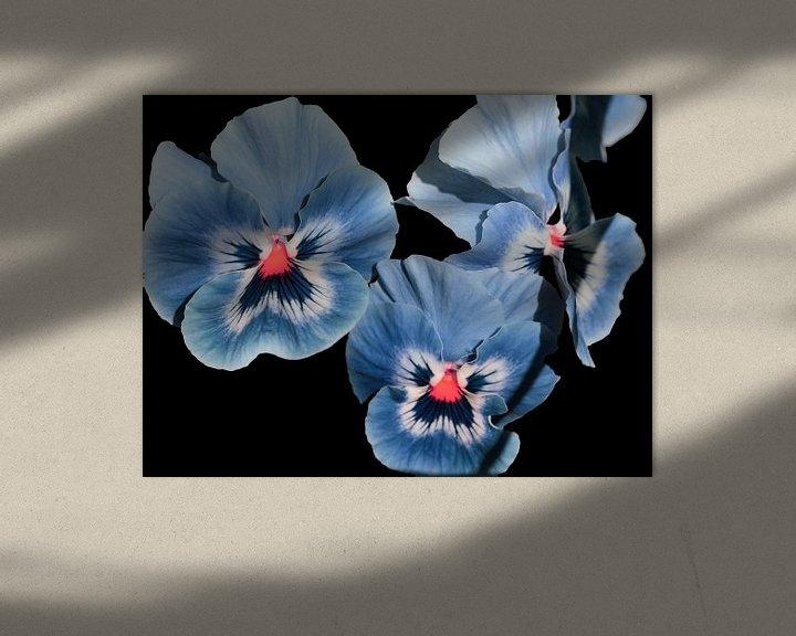 Sfeerimpressie: Viooltjes, blauw paars. van Ronald Smits