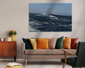 Alabatros boven stormachtige zee van Peter Zwitser